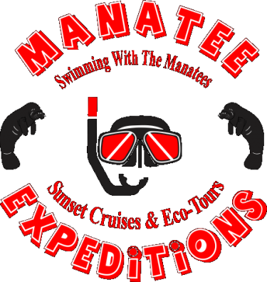 Swim With The Manatees in Crystal River - Manatee Expeditions